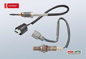 Temperature sensor/oxygen sensor
